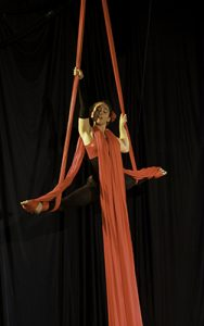 Aerial Silks Classes